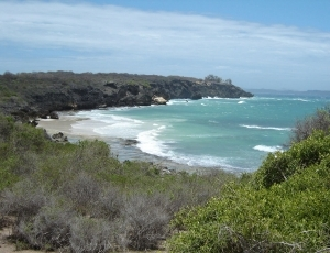 Diego Bay entrance