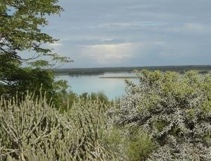 Tsimanampesotse Landscape